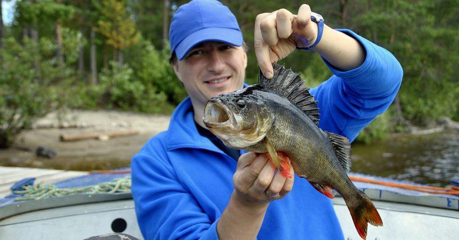 Рекомендации по рыбалке в Карелии
