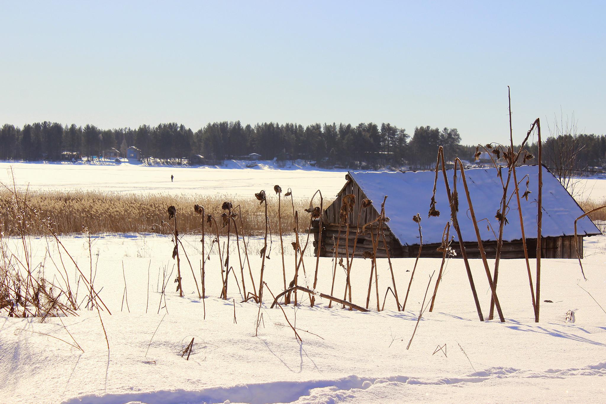 По древним путям. Деревня Вокнаволок и хутор Кормило