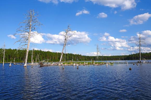 Озеро Куйто - экскурсия по озеру Куйто - Тайны озера Куйто