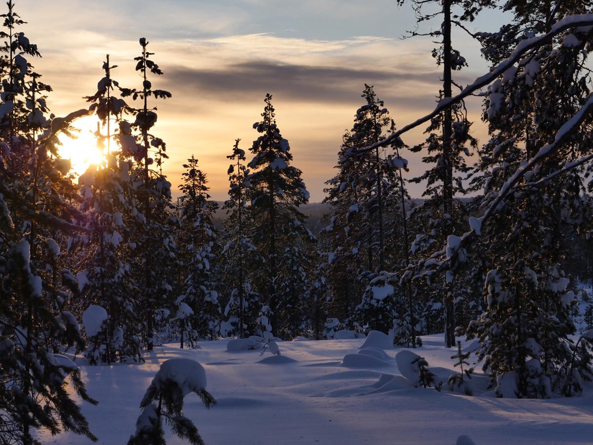 Снегоходы зимой в Карелии