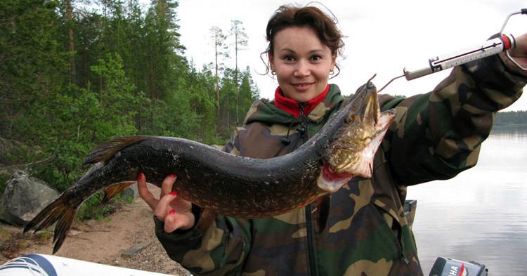 Летняя рыбалка в Карелии в Калевале