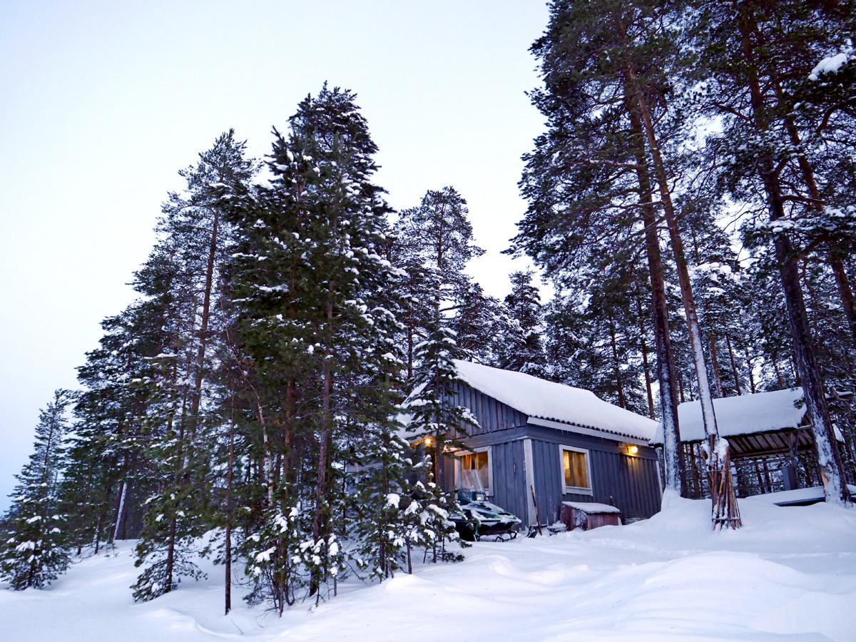 Снегоходный тур Рождественский Snow Драйв