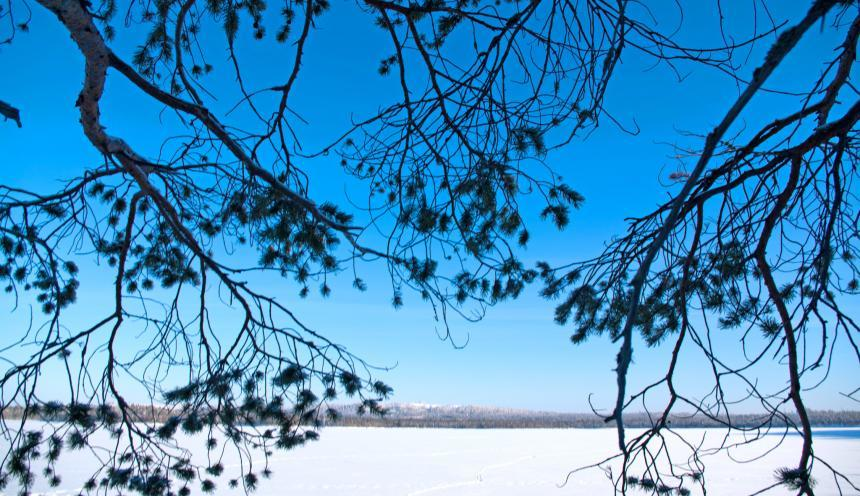 Изба Хирмуш на берегу озера зимой