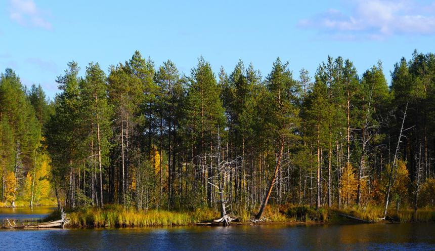 Отдых в Карелии осенью - пеше-водный поход