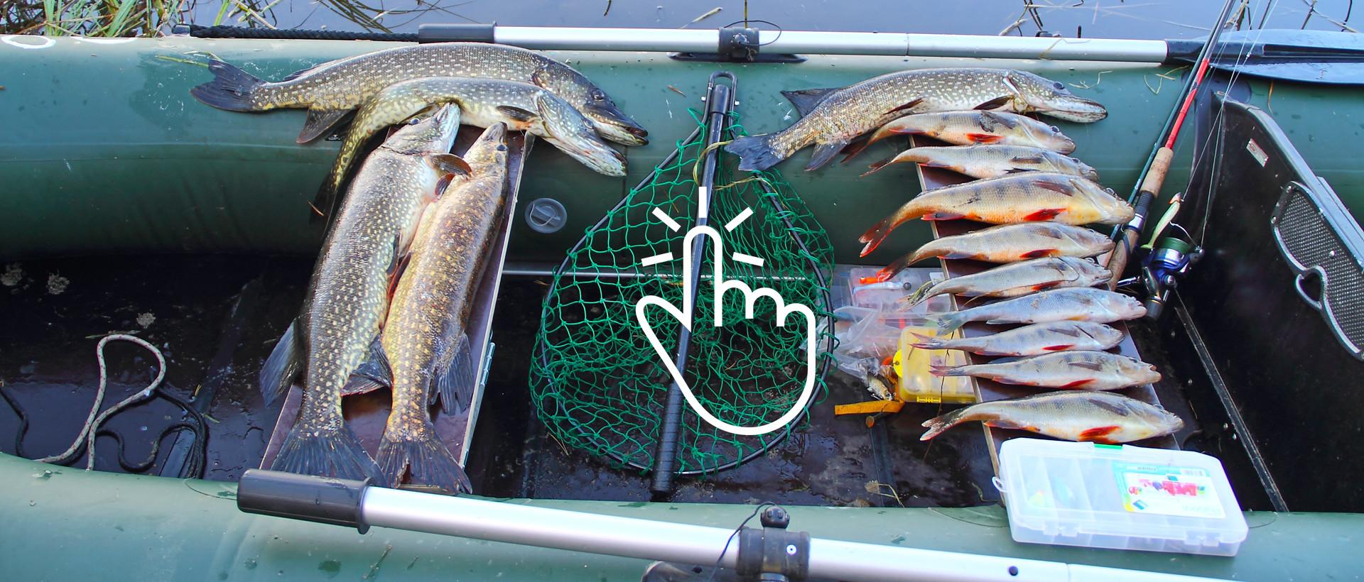 Рекомендации по рыбалке в Северной Карелии