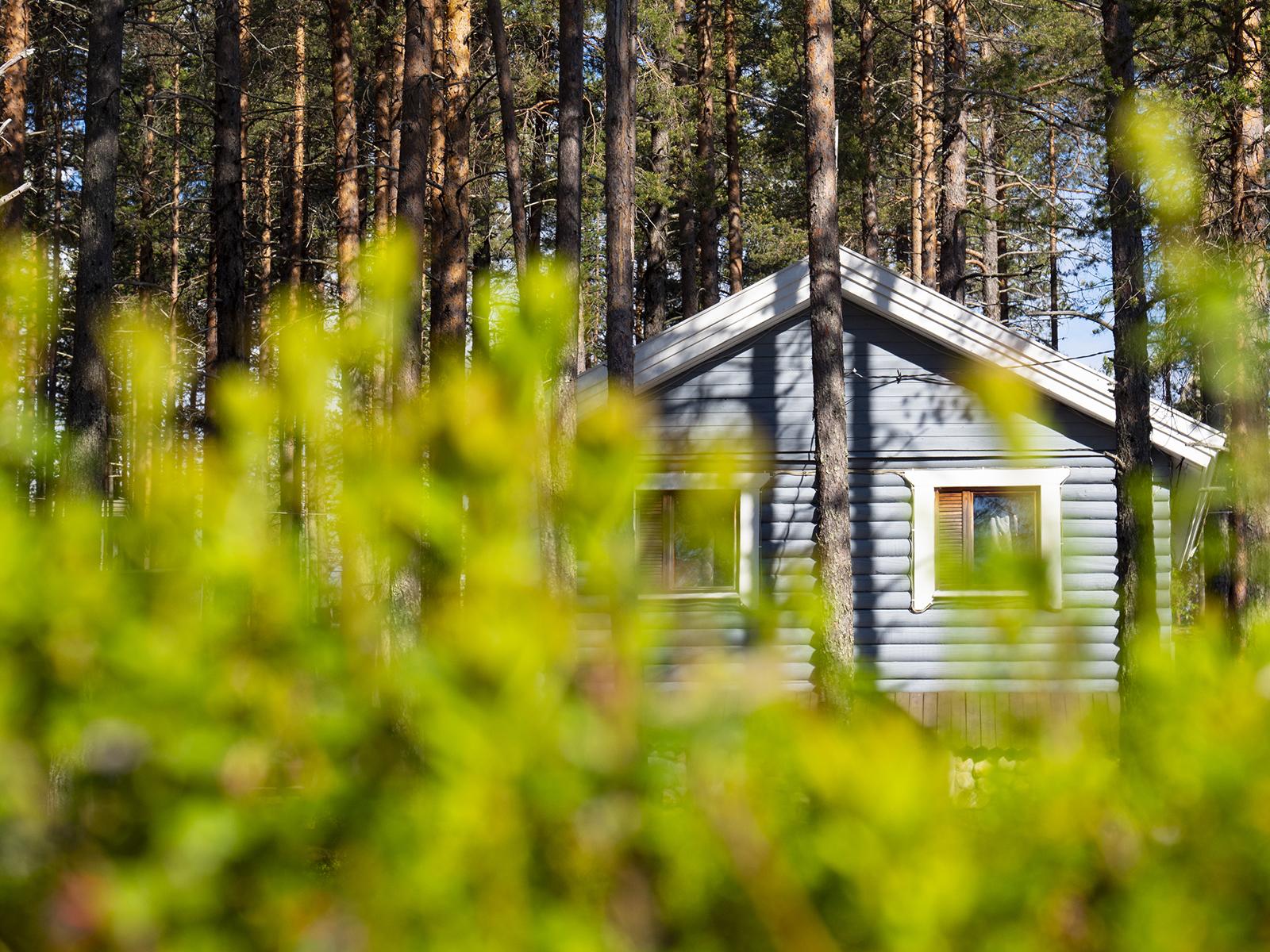 Переспать в Калевале. Кислородный туризм в северной Карелии