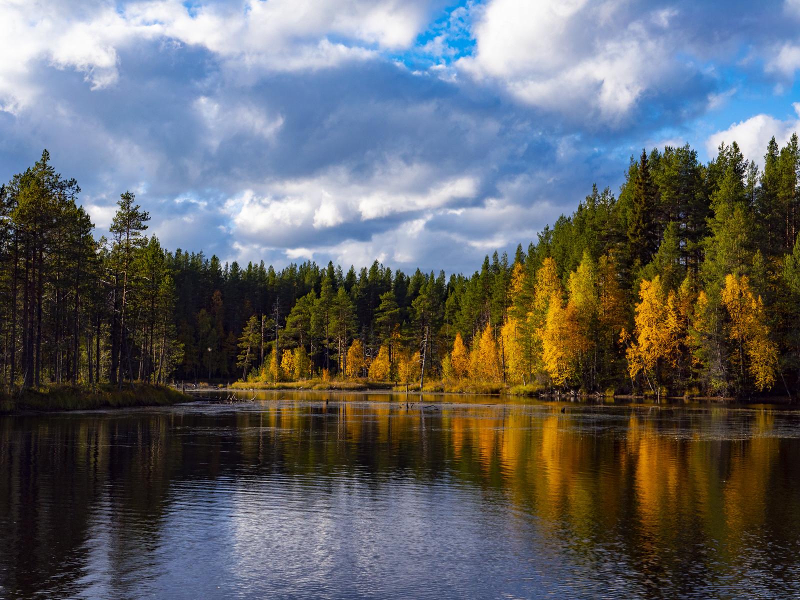 Золотая осень в Калевале