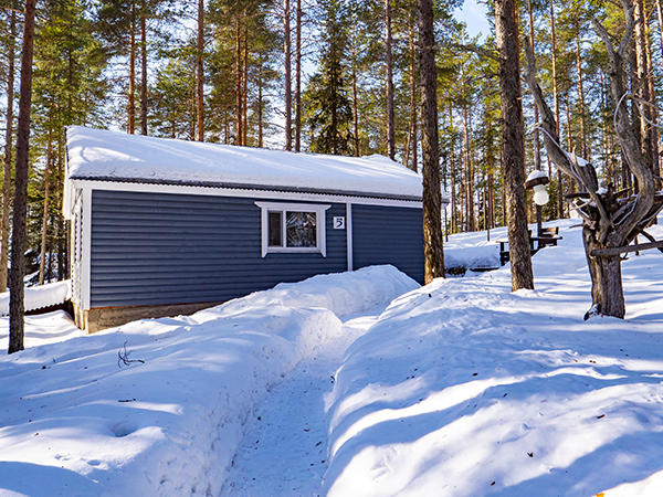 Коттеджи в Северной Карелии - коттедж семейный зимой