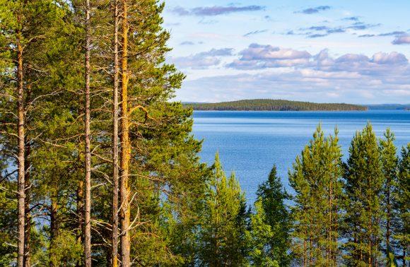 Что можно и нельзя туристам на отдыхе в Карелии с 1 июня