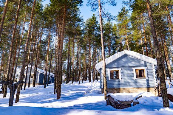 в Карелии коттеджи на турбазе ВелТ №2-3-4 зимой