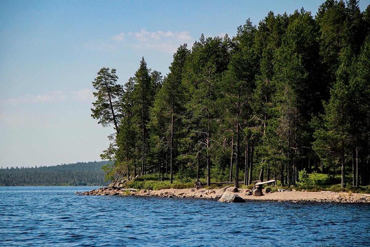 Отдых в Карелии Калевала озеро Куйто